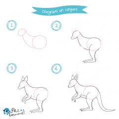 Disegni Colorare Animali Australia