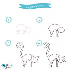 disegni da colorare gatto