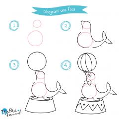 disegni da colorare foca