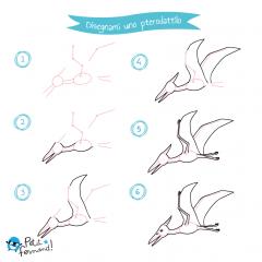 disegni da colorare dinosauri pterodattilo