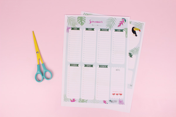 Calendario settimanale estivo