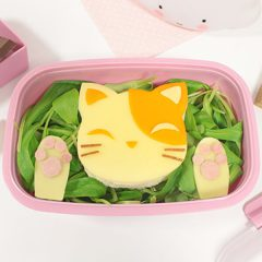 funfood sandwich gatto