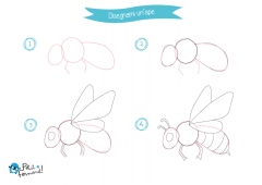 Disegni Da Colorare Per Bambini Come Disegnare Gli Insetti
