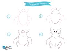 Disegno scarabeo